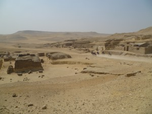 Giza Horses